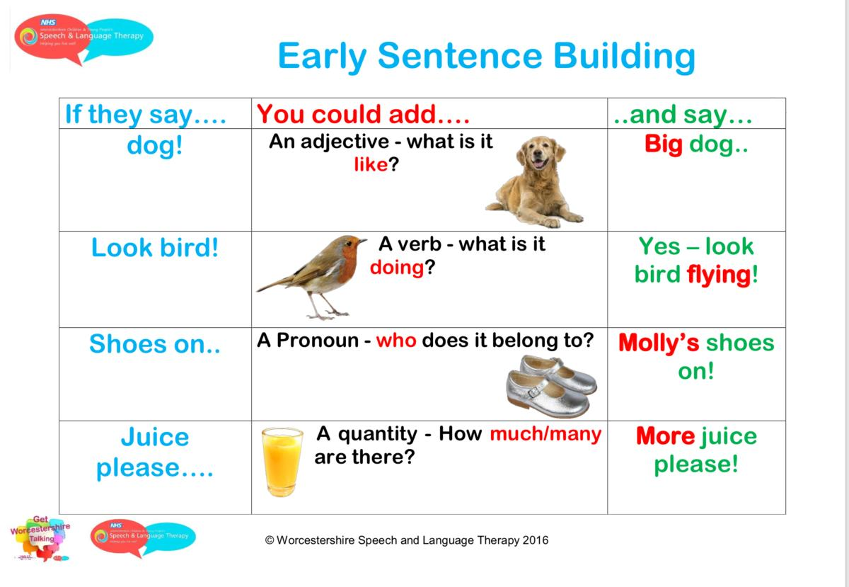 Early sentence building
