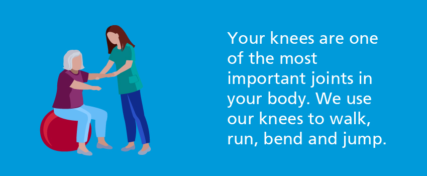 Your knees are one of the most important joints